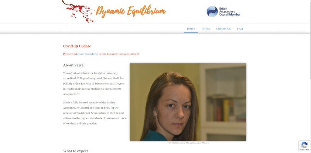 Website Portfolio - Homepage of Dynamic Equilibrium Website